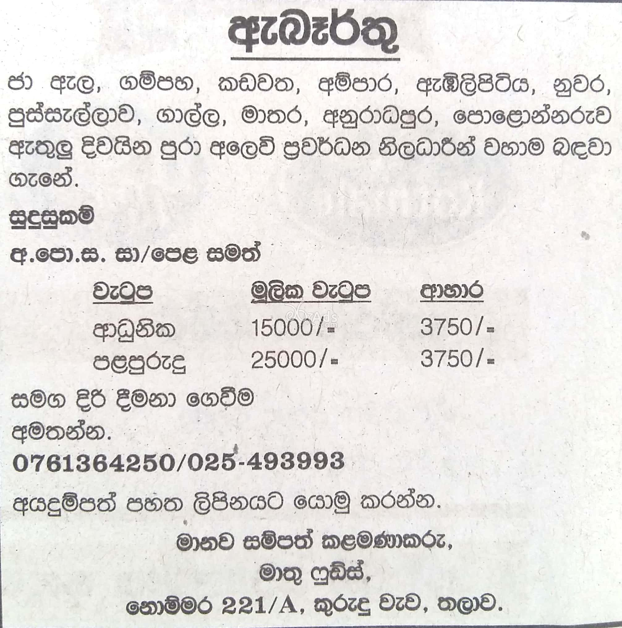 Sales Logistic Officer Vacancy at Meethu Foods Products